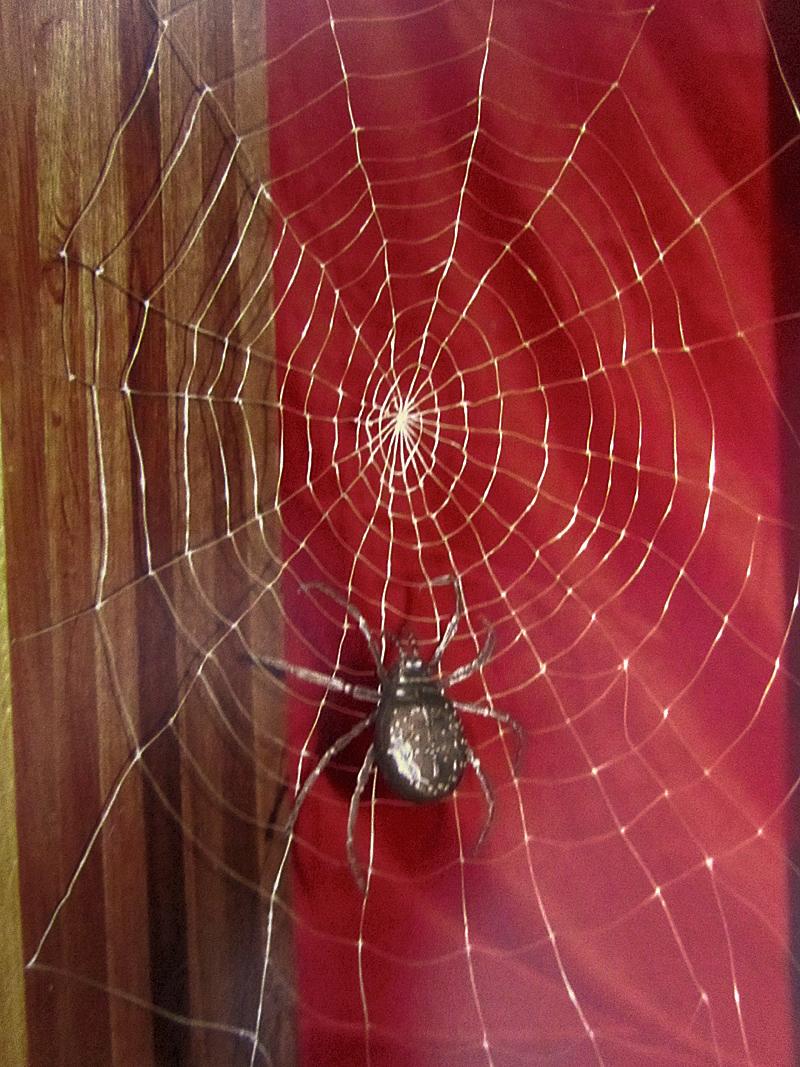 spider-gold.jpg
