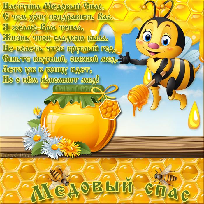 S-MEDOVYM-SPASOM.png