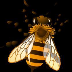 honey-bee-clip-art-17034.th.png