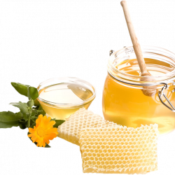 honey_PNG11554.th.png