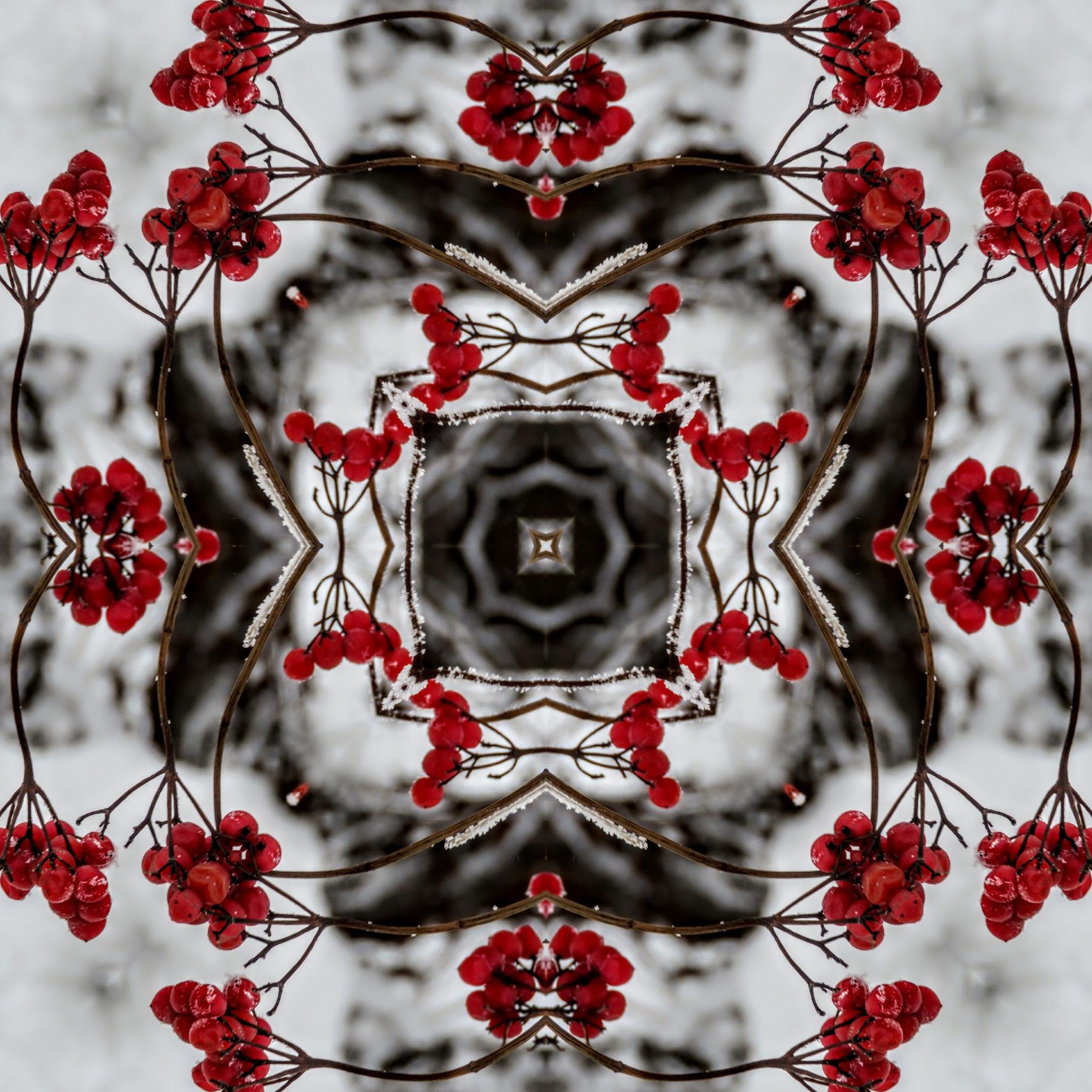 imgonline com ua Kaleidoscope 4qGXWGaNoK1