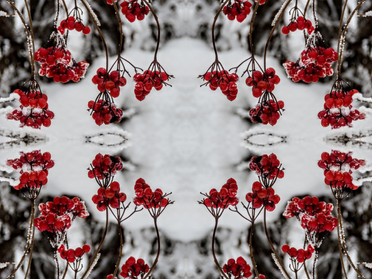 imgonline com ua mirror collage 64LCrPGtbcC5