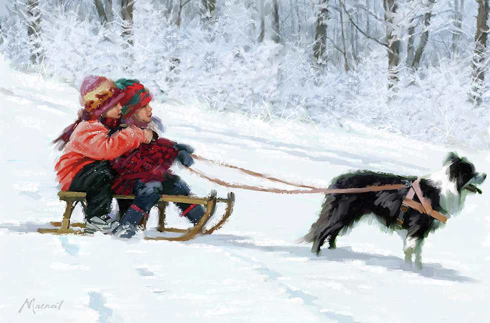0016-sled-dog-the-macneil-studio.jpg