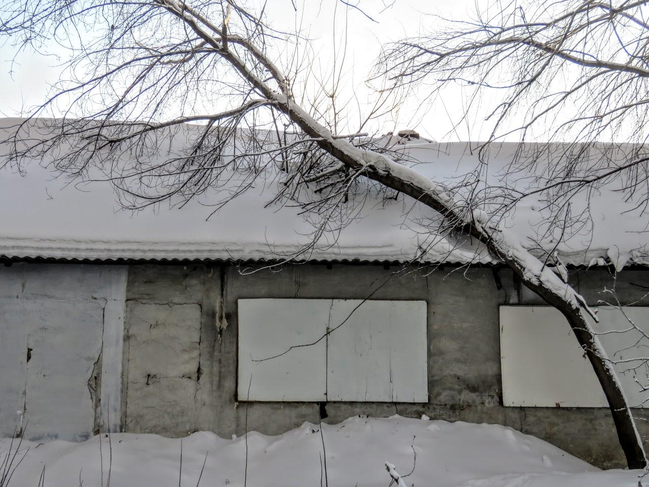 IMG 9648